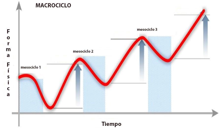 macrociclo y mesociclos de entrenamiento de escalada deportiva o bloque
