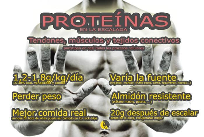infografía de información sobre las proteinas en la dieta para escalada