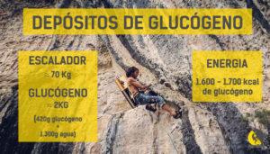 Tanques de reservas de glucógeno es un escalador