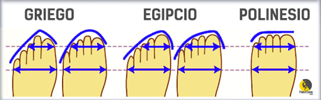 formas de pies para tenis de escalada