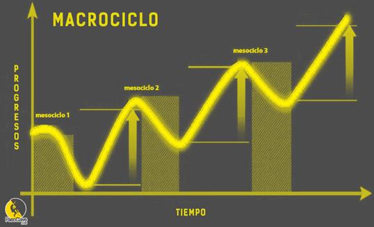 modelo de periodización ATR para escalada