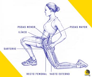 estiramiento del psoas y del músculo ilíaco para los glúteos en escalada