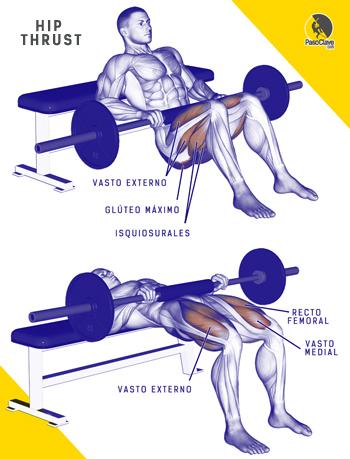hip thrust es el mejor ejercicio para entrenar glúteos para escaladores