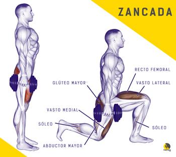 entrenamiento de glúteos para escalada con el ejercicio de zancadas o estocadas