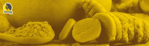 raíz de cúrcuma y especia de cúrcuma para consumir por escaladores