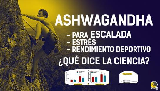 suplementación con ashwagandha para mejorar el rendimiento deportivo