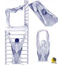 estiramientos del dorsal ancho para escaladores