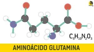 aminoácido glutamina para escalada