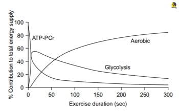 Contribución de las vías metabólicas en la escalada