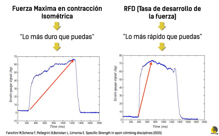 Diferencias entre fuerza de contacto y fuerza máxima en escalada