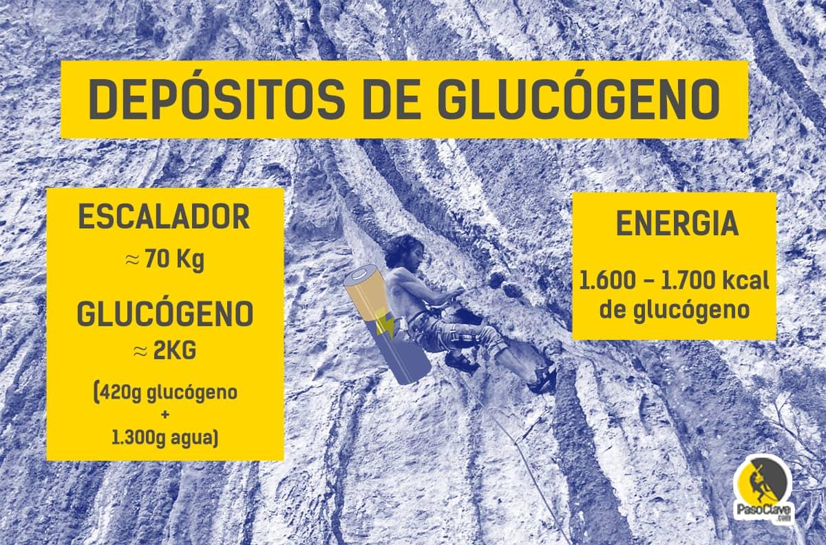 Depósitos de glucógeno es escaladores