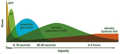 Participación de los sustratos energéticos en la escalada