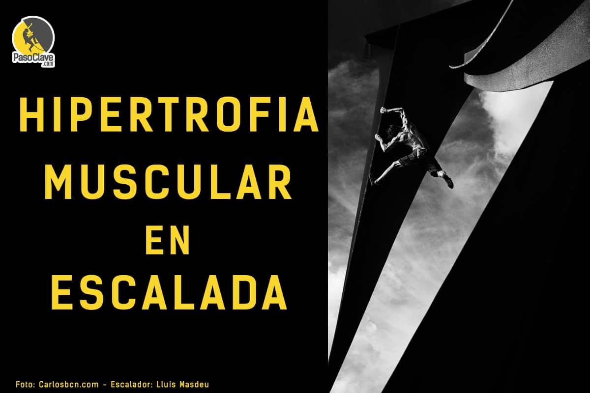 hipertrofia muscular en escalada